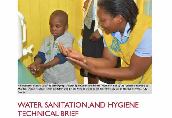 Afya Jijini Water, Sanitation, and Hygiene Technical Brief